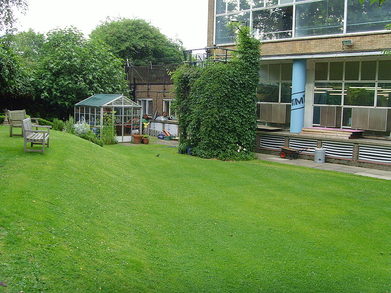 The Blue Peter Garden as photographed by Gill Rickson